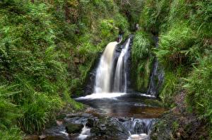 Обои Великобритания Парки Камни Водопады Дерева Northern Ireland, Gortin Forest Park Природа