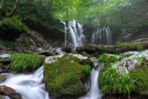Обои Водопады Камень Тумана Мох