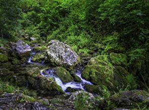 Фото Австрия Камень Ручей Мох Muggendorf Природа