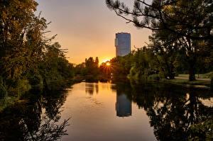 Фото Австрия Вена Парки Рассвет и закат Пруд Лучи света Деревья Wasserpark Floridsdorf Природа