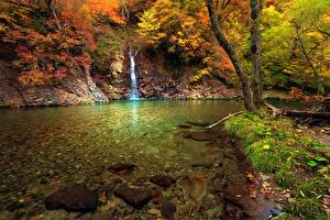 Фото Осенние Водопады Речка Траве Мха