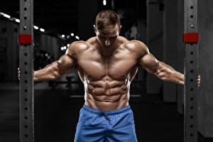 Картинки Бодибилдинг Мужчина Поза Живота Мышцы спортивный