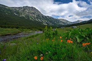 Фото Болгария Гора Река Траве Rila Природа