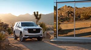 Фотографии Cadillac Внедорожник Белых Спереди Escalade, Platinum Sport, 2020