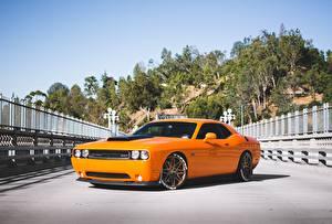 Картинки Dodge Оранжевые srt, challenger, 392, hemi Автомобили
