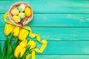 Фотографии Пасха Тюльпаны Доски Яиц Гнезда Желтый Шаблон поздравительной открытки цветок