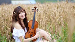 Фото Поля Азиаты Скрипка Шатенка Улыбается Взгляд Сидит Боке Chinese молодые женщины
