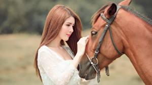 Картинка Лошадь Азиатки Размытый фон 2 Руки Шатенка Chinese животное Девушки