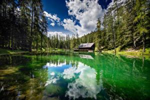 Фото Италия Озеро Лес Отражении Dolomites Природа