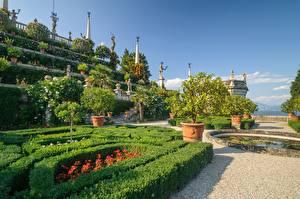 Фотография Италия Озеро Ландшафтный дизайн Скульптура Сады Кусты Lago Maggiore, Isola Bella, Сады Борромео город
