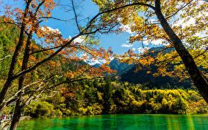 Фотография Цзючжайгоу парк Китай Осенние Парки Лес Озеро Природа