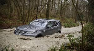 Фотография Land Rover Воде Серебряная SUV Discovery, UK-spec, 2017