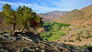 Обои для рабочего стола Марокко Горы Камень Дерево Atlas Mountains Природа