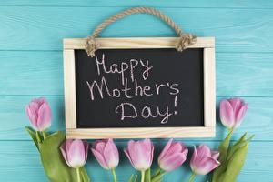 Фотография День матери Тюльпаны Английская Слова Цветы