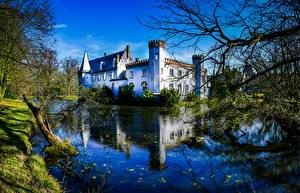 Фотографии Нидерланды Замок Пруд Башня Ветки Stapelen Castle Города