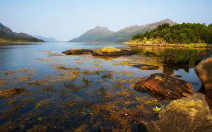 Картинки Норвегия Горы Камни Воде Тумана Природа