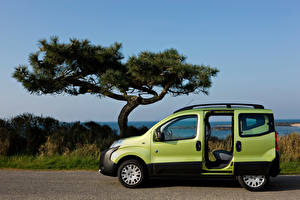 Фото Пежо Зеленый Металлик Сбоку Открытая дверь Минивэн Bipper Tepee Outdoor, 2009–17 машина
