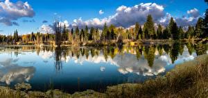 Картинка Реки Штаты Парки Осень Леса Панорама Отражение Grand Teton national Park, Wyoming, Snake River Природа