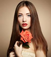 Фото Розы Цветной фон Шатенки Взгляд Красные губы Лицо молодая женщина