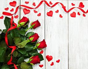 Картинки Роза Красных Лента Серце Доски Шаблон поздравительной открытки цветок