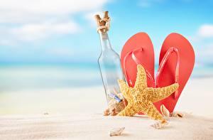 Фотография Морские звезды Шлепки Песке Бутылки