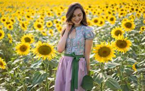 Фотографии Подсолнечник Поля Улыбка Laura Девушки Цветы