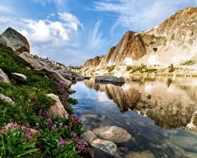 Фотография Америка Камни Воде Скалы Wyoming Природа