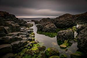 Фотография Великобритания Побережье Камень Giants Causeway, Northern Ireland Природа