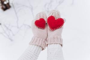 Фотография День всех влюблённых Сердца Варежки Рука