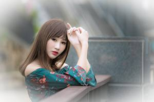 Фотографии Азиаты Боке Шатенки Руки Взгляд молодые женщины