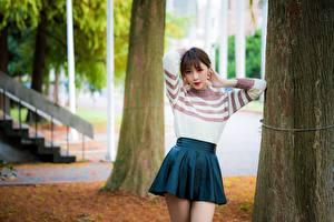 Фото Азиаты Размытый фон Шатенка Свитер Юбка Ствол дерева молодые женщины