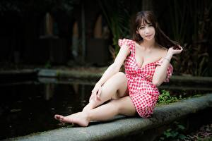 Фотографии Азиатки Шатенка Сидит Размытый фон Платья Рука Ноги молодые женщины
