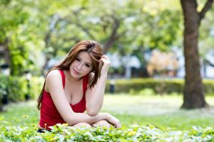 Фотографии Азиатка Траве Шатенки Взгляд Рука Сидит Размытый фон девушка