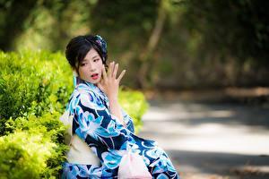 Фото Азиатка Боке Брюнетка Рука Кимоно Сидящие Japanese девушка