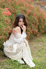 Обои Азиаты Сидя Платье Взгляд Боке Шатенки молодая женщина
