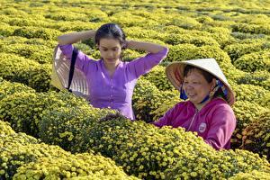 Фотографии Азиатки Две Брюнетки Шляпы Работа Vietnamese девушка