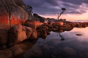 Картинки Австралия Камень Вечер Залива Утес Bay of Fires Природа