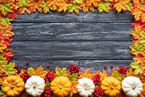 Фотография Осенние Тыква Шаблон поздравительной открытки Доски Листья