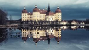 Фото Птицы Замок Германия Отражении Moritzburg Castle, Saxony
