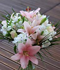 Фотографии Букеты Лилии Альстрёмерия цветок