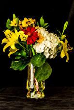 Картинки Букет Лилия Гортензия Хризантемы Черный фон Вазе цветок