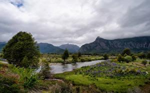 Картинки Чили Горы Речка Пейзаж Облака Дерево Patagonia Природа