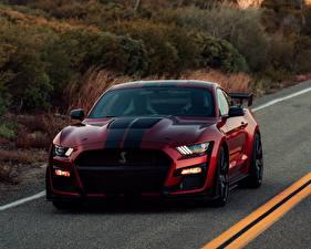 Обои Ford Красные Mustang Shelby GT500 2019 Автомобили