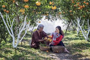 Фотография Сады Мужчина Два Сидит Корзина Улыбается Траве Vietnamese Девушки