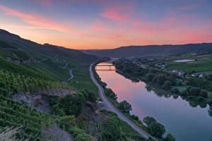 Фотографии Германия Реки Мост Дороги Виноградник Erden, Mosel River