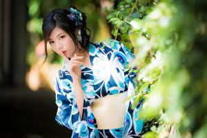 Обои Жесты Азиатка Ветка Размытый фон Брюнеток Взгляд Кимоно Рука Japanese Девушки