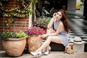 Картинки Сумка Азиаты Шляпе Шатенка Платье Сидящие Ног Туфлях Боке Красивые девушка