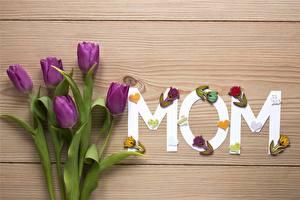 Фотография День матери Тюльпан Доски Цветы