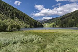 Обои для рабочего стола Гора Озеро Леса Италия Трава Lake Valdurna, Sarentino, Bolzano Природа