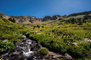 Фотография Горы Камень Андорра Траве Трава Ordino Природа